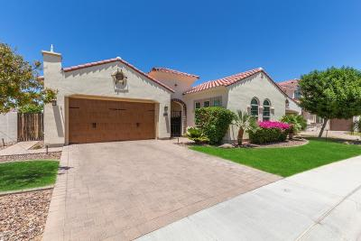 Chandler Single Family Home For Sale: 2448 W Hope Circle