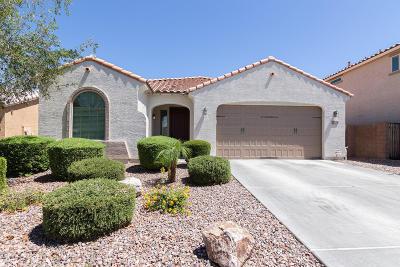 Gilbert Single Family Home For Sale: 2028 E Hazeltine Way