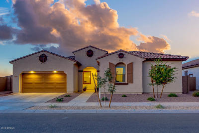 Queen Creek Single Family Home For Sale: 22686 E Desert Hills Drive