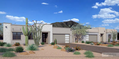 Cave Creek Multi Family Home For Sale: 37042 Conestoga Trail #A and B