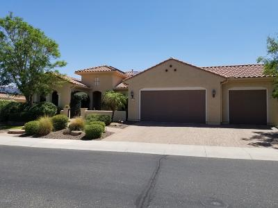 Sun City Festival Rental For Rent: 20319 N 264th Avenue