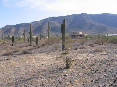 Residential Lots & Land For Sale: 9600 S 25th Avenue