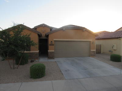 San Tan Valley Single Family Home For Sale: 38564 N Navarro Drive