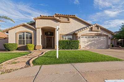 Mesa Single Family Home For Sale: 9809 E Obispo Avenue