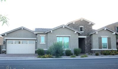 Mesa Single Family Home For Sale: 4808 S Eastern Run