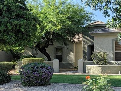 Mesa Single Family Home For Sale: 8543 E Princess Circle