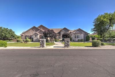 Chandler Single Family Home For Sale: 2499 E Virgo Place