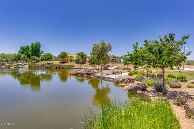 Mesa Single Family Home For Sale: 10223 E Stealth Avenue