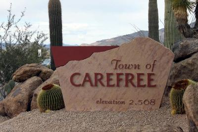 Carefree Residential Lots & Land For Sale: 36232 N Twilight Trail