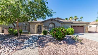 Gilbert Single Family Home For Sale: 531 E Elgin Court