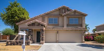 El Mirage Single Family Home For Sale: 12534 W Sierra Street