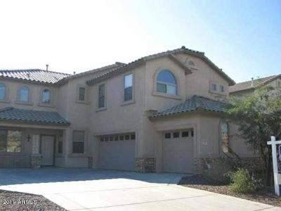 Laveen Single Family Home For Sale: 4615 W Magdalena Lane