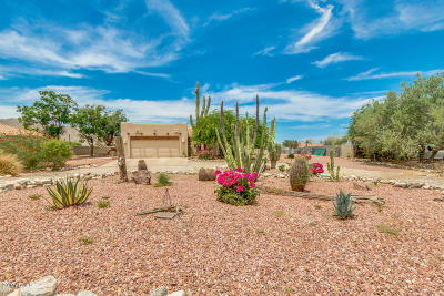 Litchfield Park Single Family Home For Sale: 19936 W Colter Street