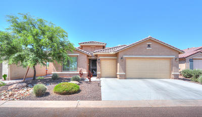 Eloy Single Family Home For Sale: 4866 W Picacho Drive