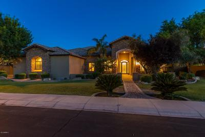 Chandler Single Family Home For Sale: 4371 E Gemini Place