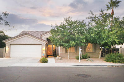 Chandler Single Family Home For Sale: 2330 E Stephens Place