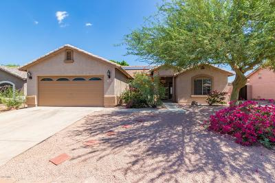 Mesa Single Family Home For Sale: 7652 E Camino Street