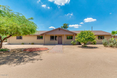 Mesa Single Family Home For Sale: 9144 E Dennis Street