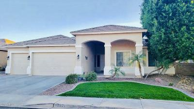 Litchfield Park Single Family Home For Sale: 13221 W Berridge Lane