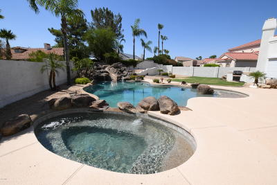 Litchfield Park Single Family Home For Sale: 4734 N Litchfield Knoll