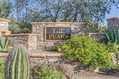 Las Sendas, Las Sendas (Eagle Feather), Las Sendas - Copper Canyon, Las Sendas - Golf Colony, Las Sendas - Pinnacle Point, Las Sendas -eagle Feather, Las Sendas Area, Las Sendas Black Rock, Las Sendas Mountain - Pinnacle Ridge, Las Sendas Mountain Estates (The Peaks), Las Sendas Mountain | Granite Preserve, Las Sendas Sonoran Hills Estates, Las Sendas, Summit, Las Sendas-Pinnacle Point Residential Lots & Land For Sale: 8464 E Teton Circle