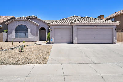 Cave Creek Single Family Home For Sale: 29011 N 46th Way
