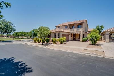 Gilbert Single Family Home For Sale: 4486 E Ivanhoe Street
