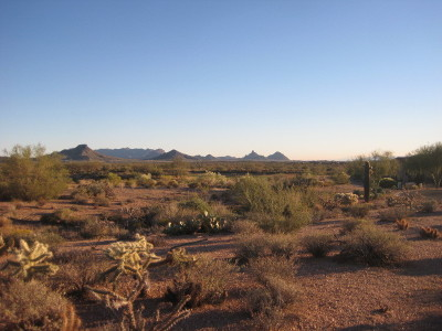 Scottsdale Residential Lots & Land For Sale: 36449 N 100th Way