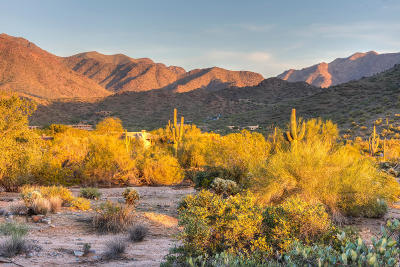 Scottsdale Residential Lots & Land For Sale: 22805 N Church Road