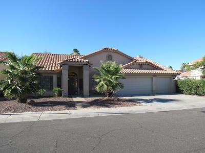 Avondale Single Family Home For Sale: 10910 W Cottonwood Lane