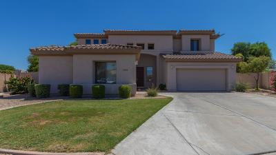 Goodyear Single Family Home For Sale: 14599 W Cheery Lynn Drive