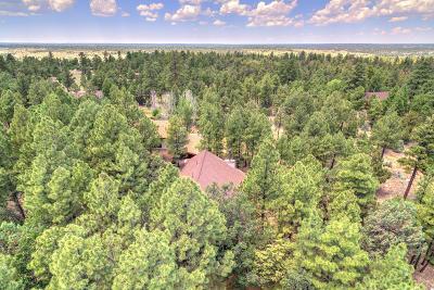 Overgaard Single Family Home For Sale: 2028 Ponderosa Trail