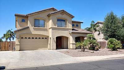 Chandler Single Family Home For Sale: 1792 E Powell Way