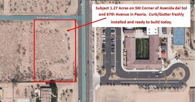 Peoria Residential Lots & Land For Sale: 6702 W Avenida Del Sol