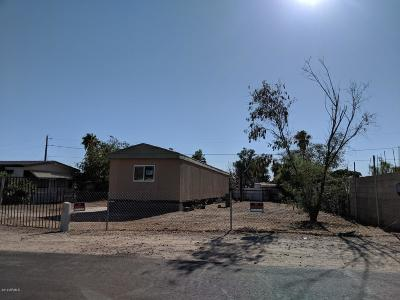 Mesa Residential Lots & Land For Sale: 356 S 98th Street