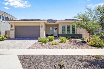Surprise, Sun City West Single Family Home For Sale: 14335 W Via Del Oro Street