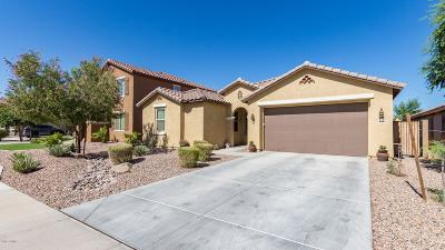 San Tan Valley Single Family Home For Sale: 34036 N Sandstone Drive