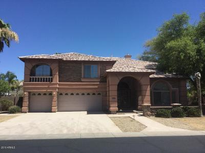 Chandler Single Family Home UCB (Under Contract-Backups): 1678 E Prescott Drive