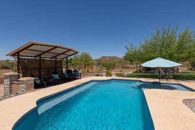 New River AZ Single Family Home For Sale: $529,000