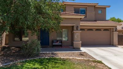 San Tan Valley Single Family Home For Sale: 937 E Chelsea Drive