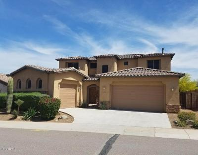 Phoenix Single Family Home For Sale: 20011 N 19th Street