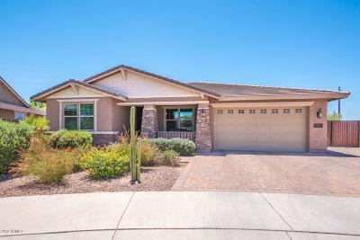 Queen Creek Single Family Home For Sale: 22031 E Estrella Road