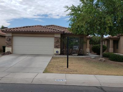 Maricopa Single Family Home For Sale: 43767 W Elm Drive