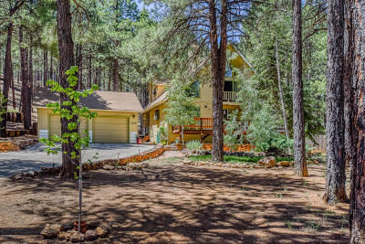 Flagstaff Single Family Home For Sale: 3029 W Foothills Way