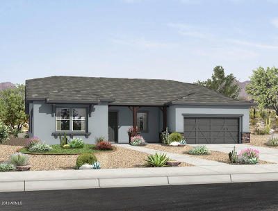 Queen Creek Single Family Home For Sale: 22926 E Sonoqui Boulevard