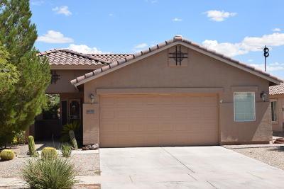 Casa Grande Single Family Home For Sale: 2457 E Fiesta Drive