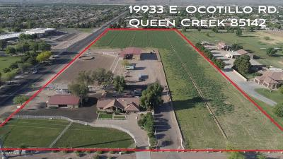 Queen Creek Single Family Home For Sale: 19933 E Ocotillo Road