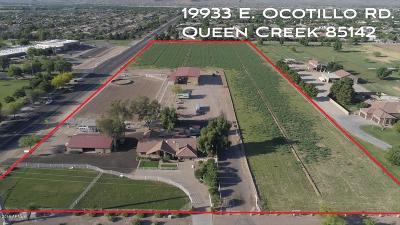 Queen Creek Single Family Home For Sale: 19933 E Ocotillo Road