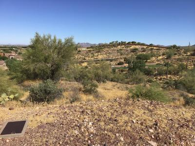 Gold Canyon Residential Lots & Land For Sale: 3818 S Avenida De Angeles