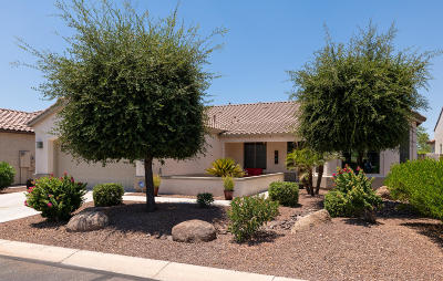 Goodyear Single Family Home For Sale: 2572 N 165th Drive